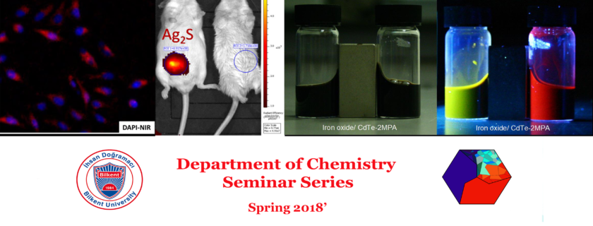 Weekly Department Seminar Series Continues with H. Funda Yağcı Acar