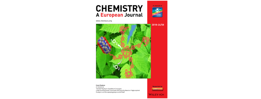 New Article is Accepted as a Cover in Chemistry European Journal