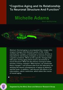 Michelle_Adams_Poster-01