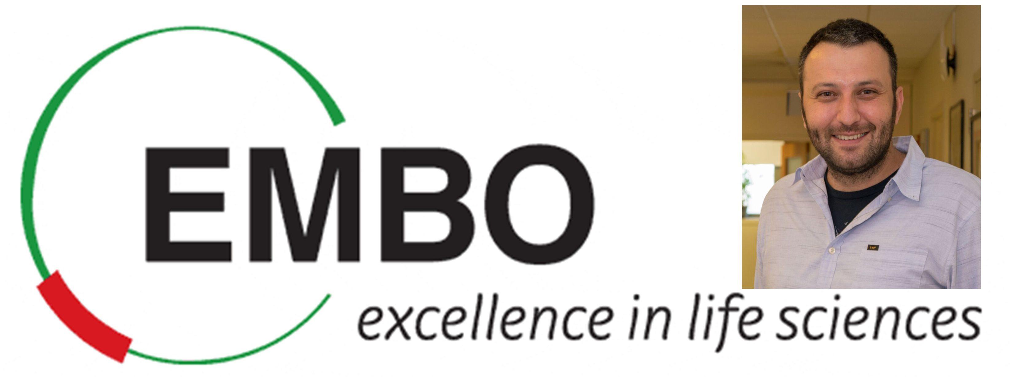 EMBO Desteği