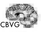 Computational and Biological Vision Group
